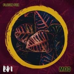 DJ Flaton Fox - Mod